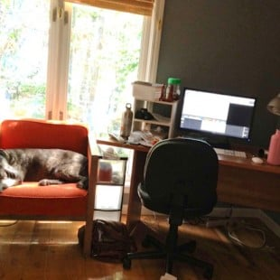 how i work from home (and actually get work done)