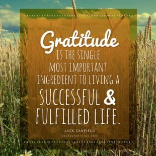 monday motivation: gratitude
