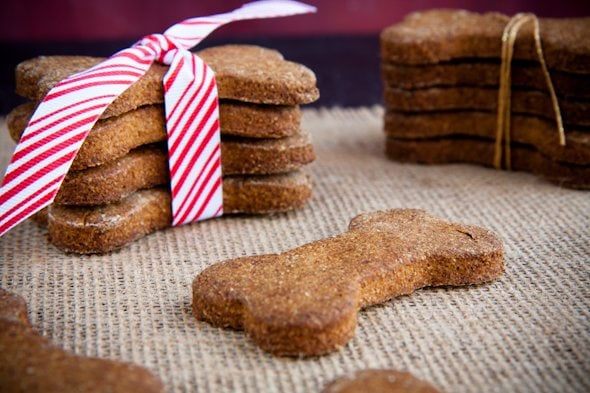 Homemade Pumpkin Dog Treats Healthy