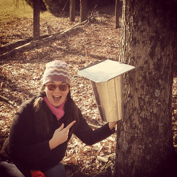 me sugaring tree