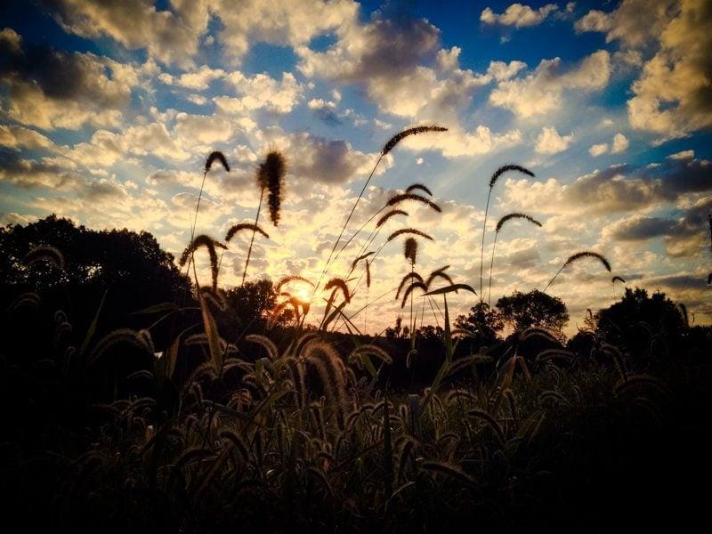 sunrise sunset stock