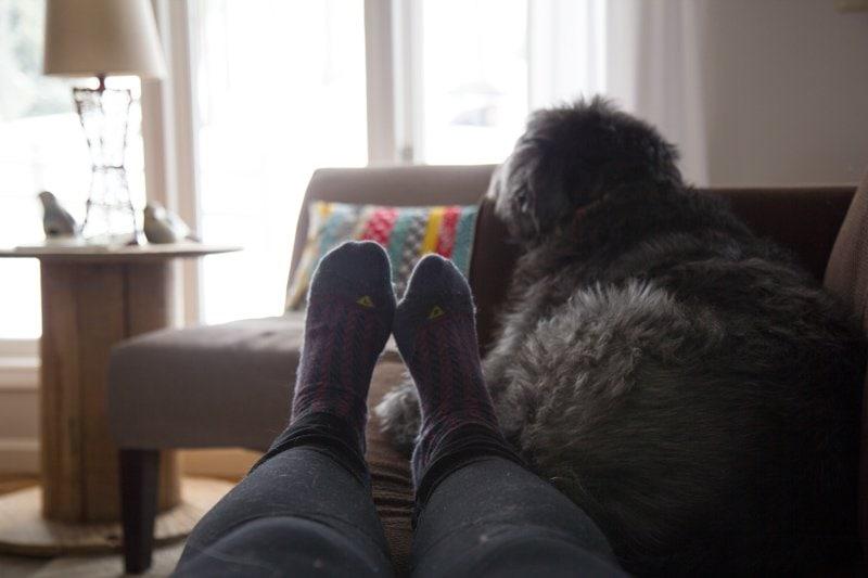 feet couch puppyface