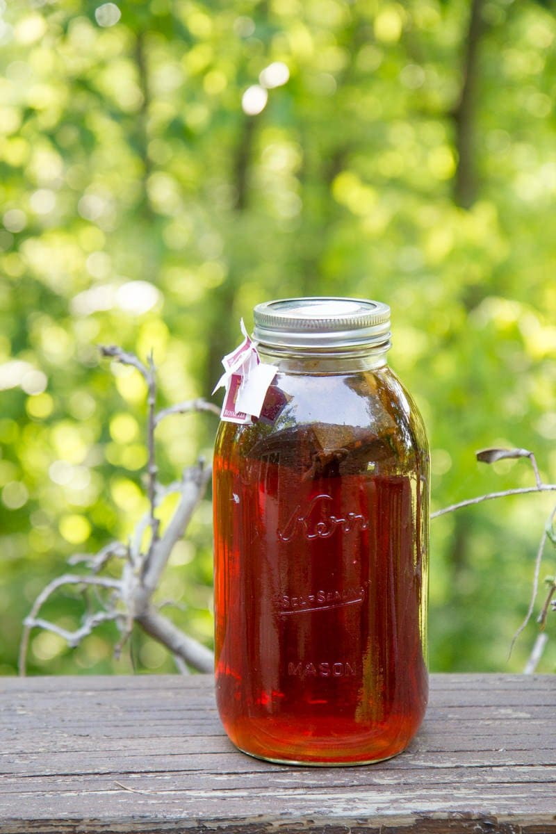 Today Is A Good Day For Sun Tea To Which He Replied By Looking At Me Like I Had Two Heads Appaly Wasn T Thing Did Growing Up In