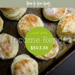 June 2014 Income Report — $503.38