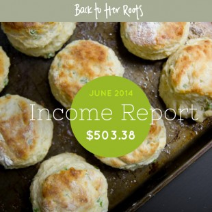 June 2014 Income Report — $503.38