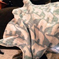 Zebi Blanket