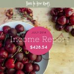 July 2014 Income Report — $428.54