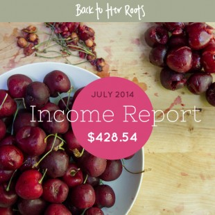 July 2014 Income Report