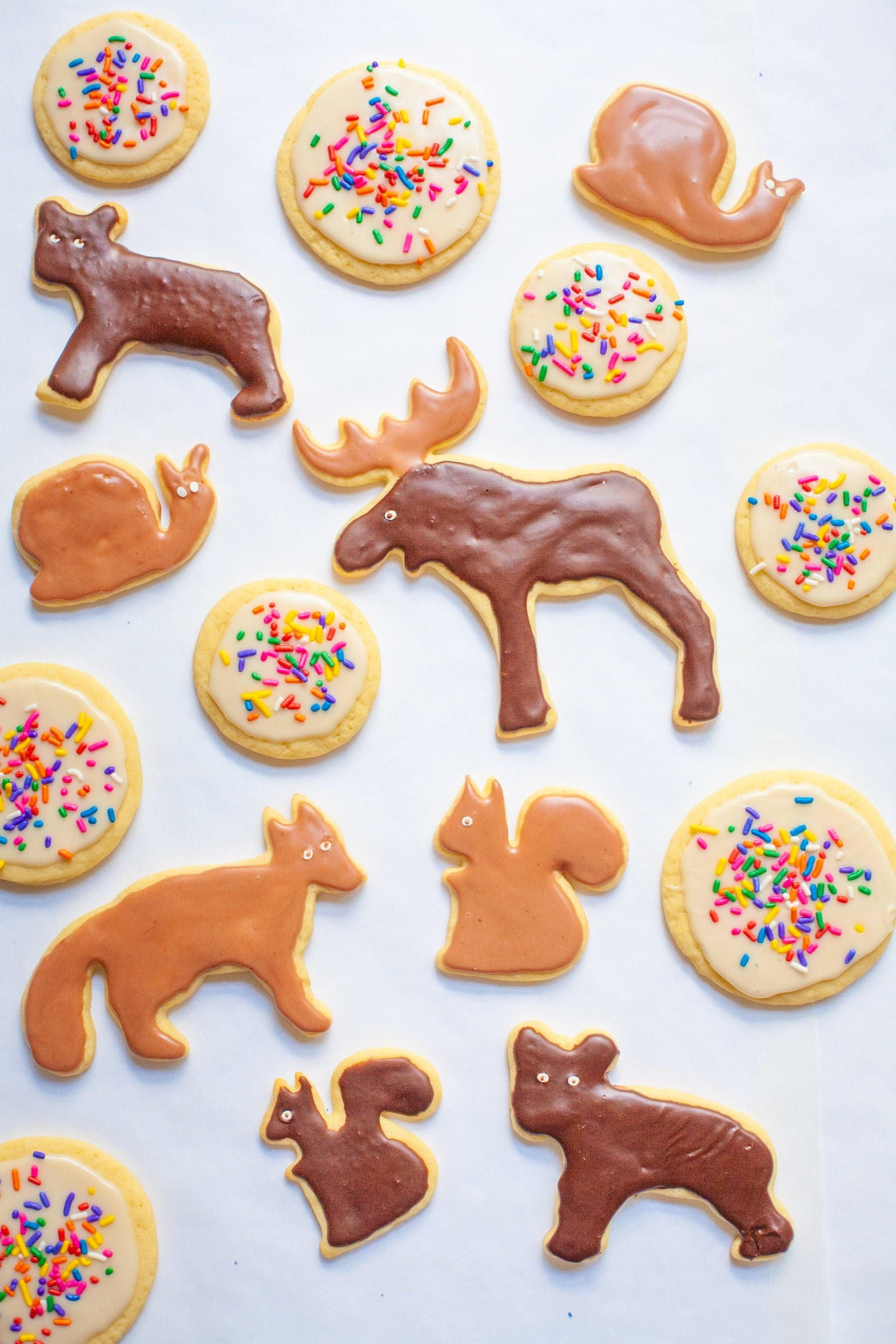 Overhead shot of frosted sugar cookies decorated as forest animals or with sprinkles