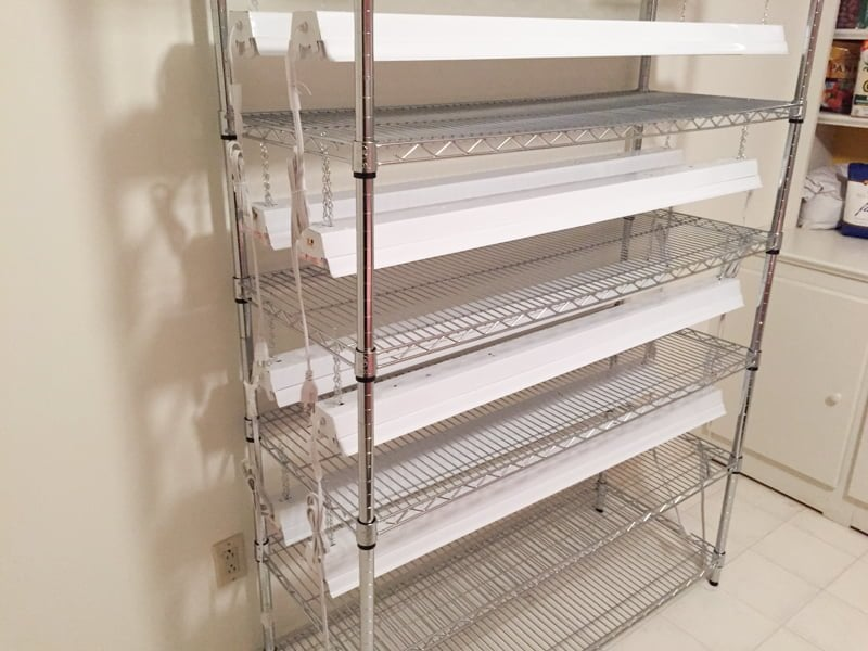 Seed Starting Shelf