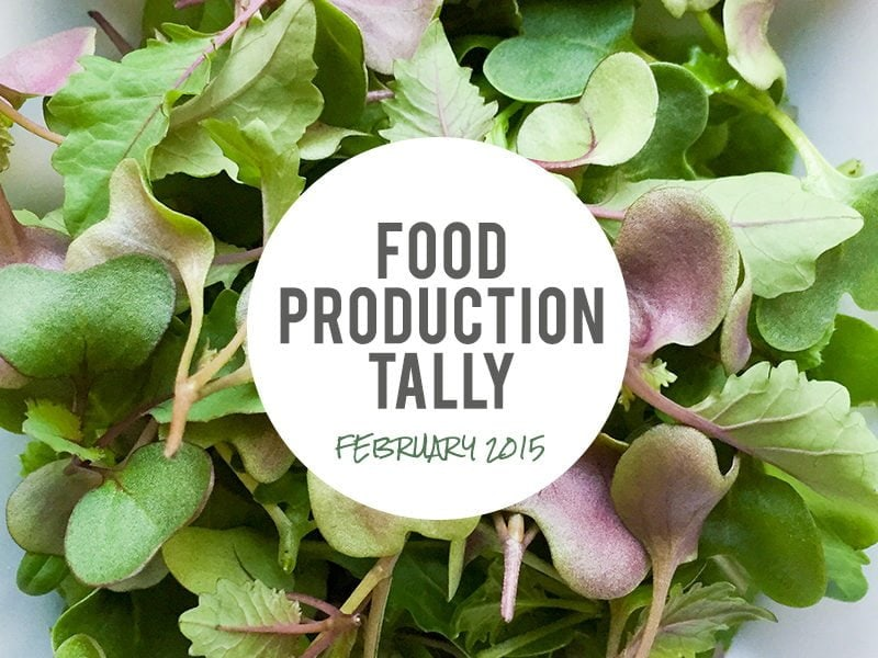 Food Production Tally—February 2015