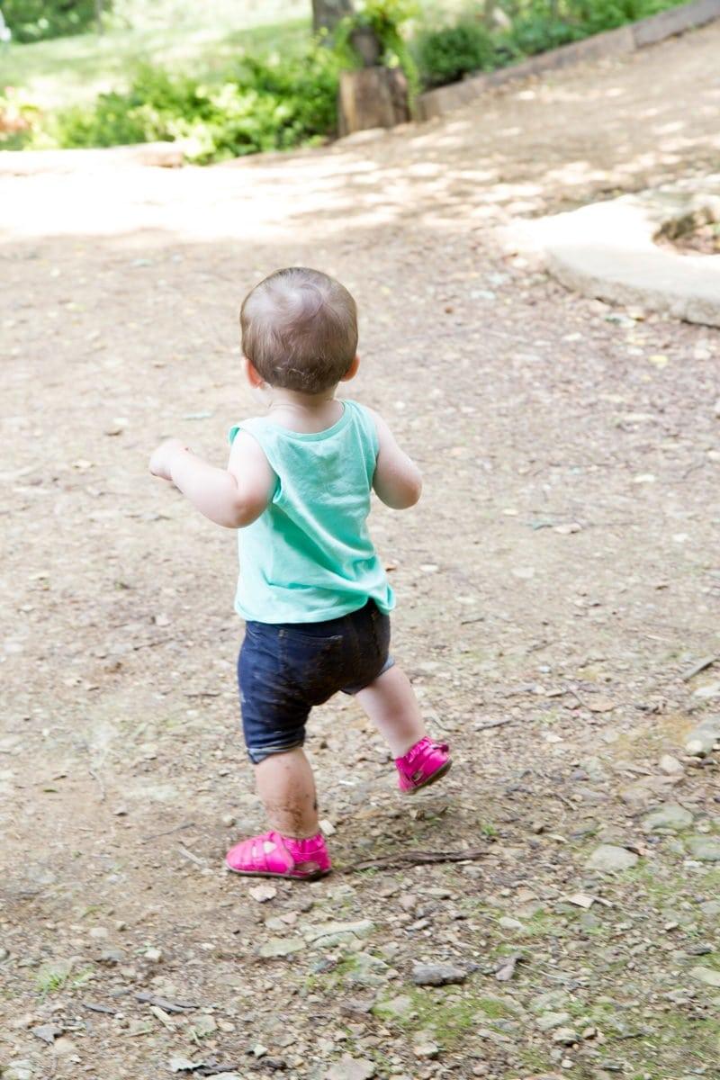 Juniper Walking