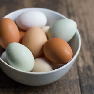 Cage-Free or Free Range: Egg Labels Explained