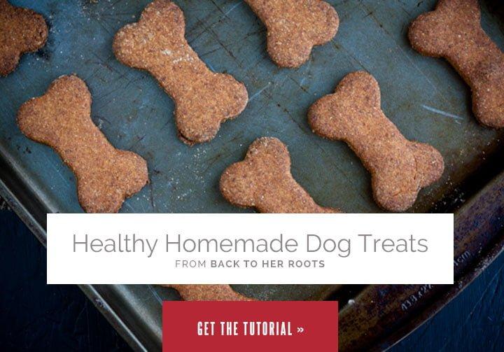 Healthy Homemade Dog Treats from Wholefully