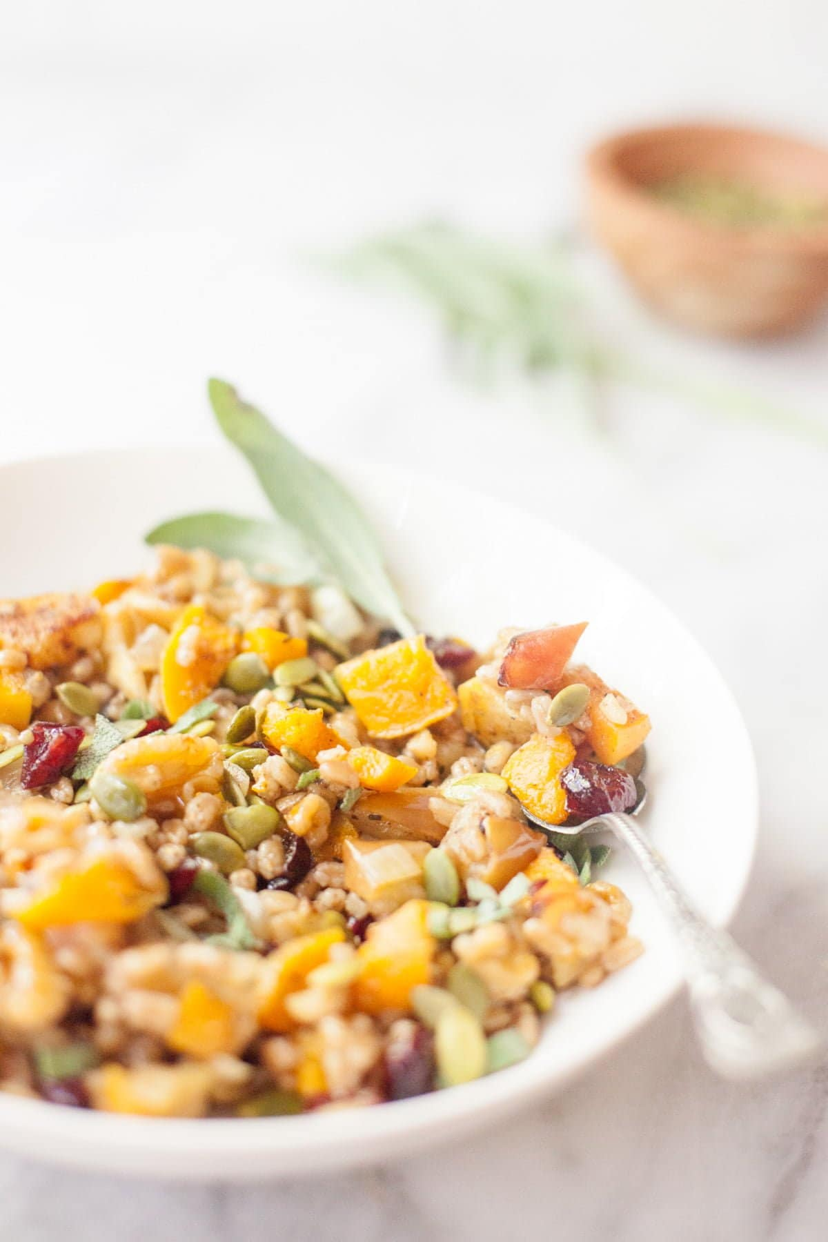 Roasted Apple and Pumpkin Farro Salad