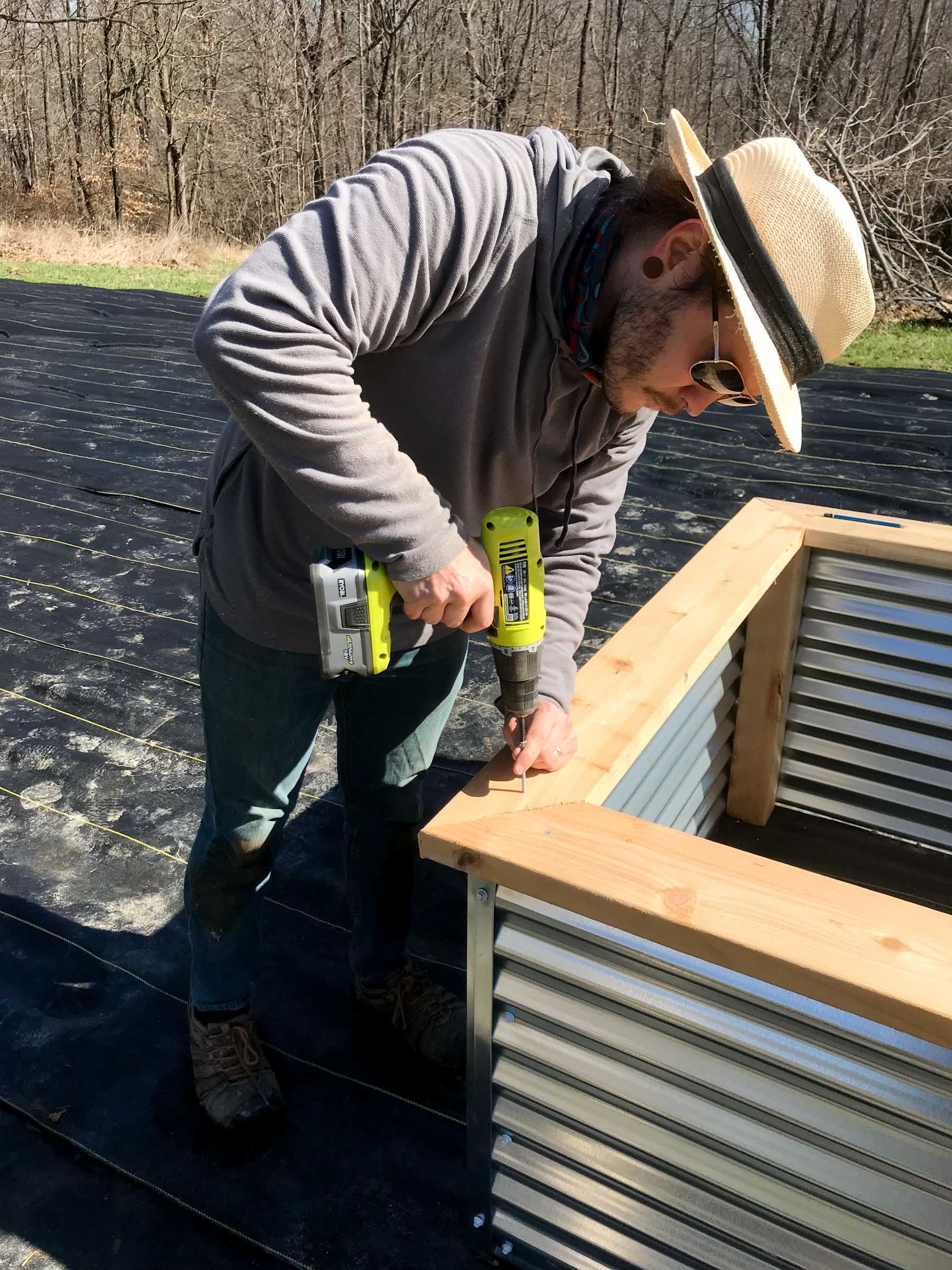 Building a raised bed - adding cedar boards to top of bed made of steel panels and cedar supports