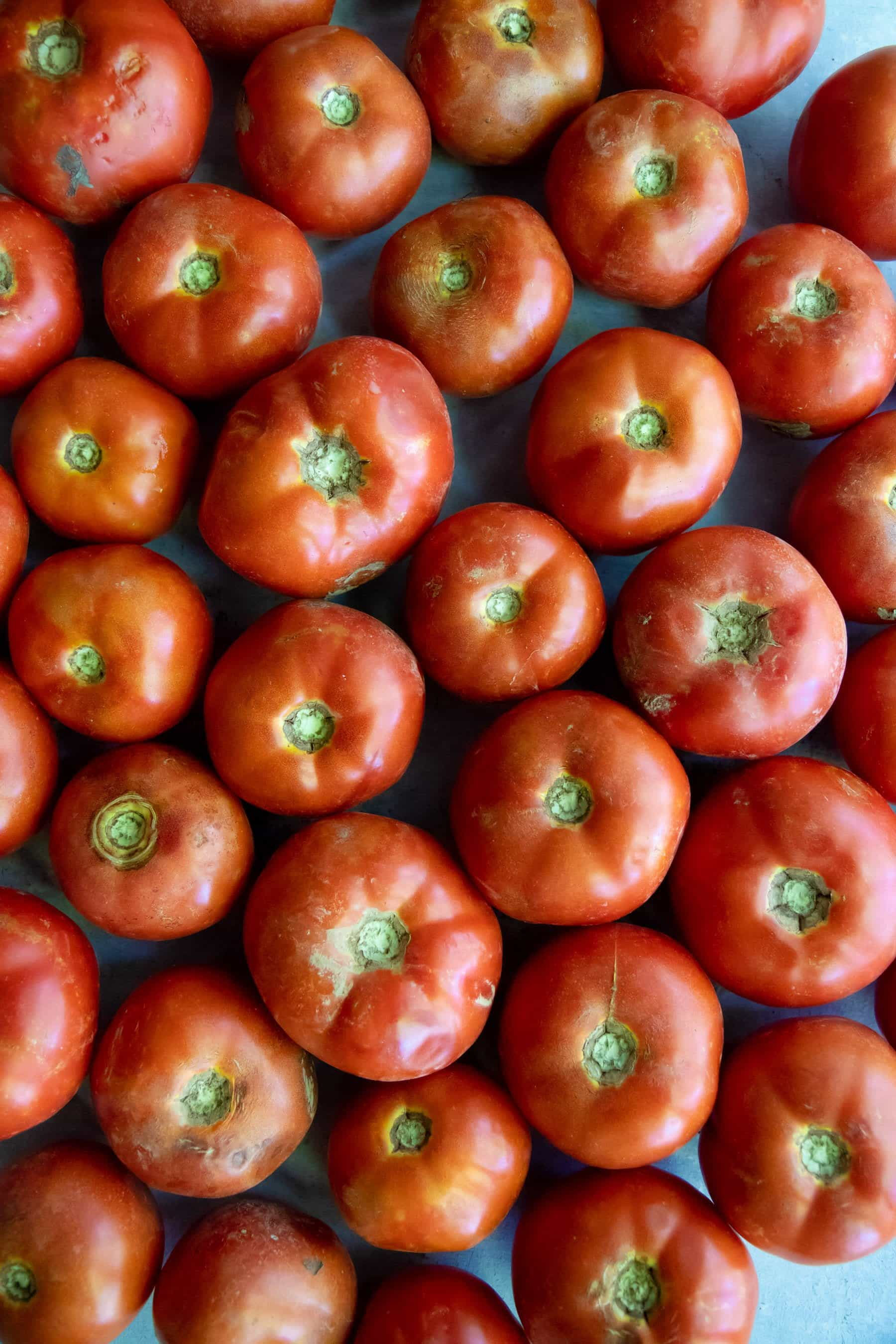 Overhead shot of homegrown tomatoes