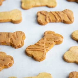 Grain-Free Pumpkin Coconut Dog Treats on a white background
