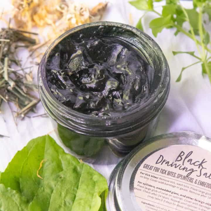 Antimicrobial Black Drawing Salve for Tick Bites and Splinters