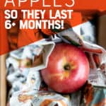 """Red apple nestled in newspaper. A hand holds the apple over a cardboard box. A text overlay reads """"How to Store Apples So They Last 6+ Months!"""""""