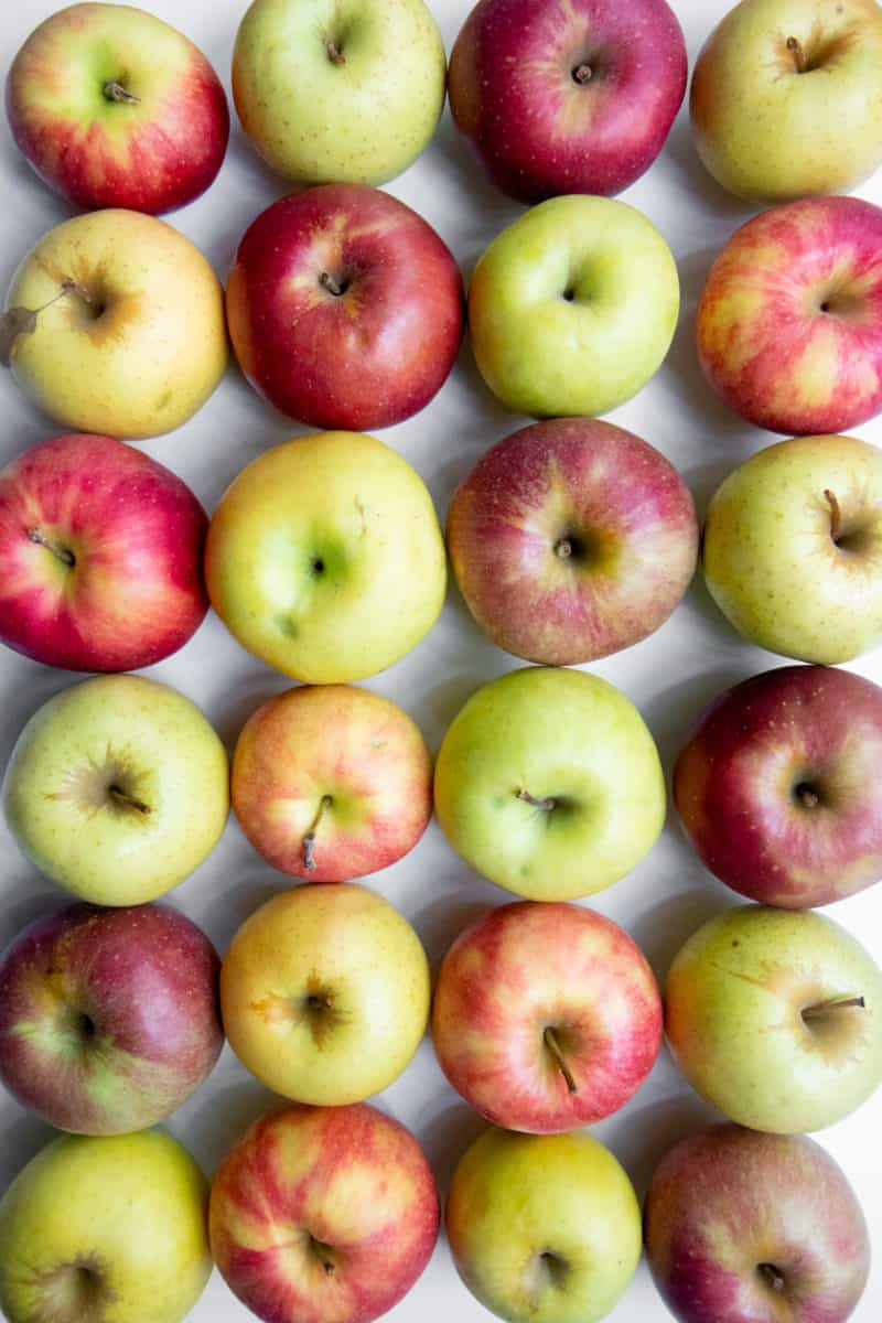 Red, yellow, and green apples are arranged in rows, ready for storage.