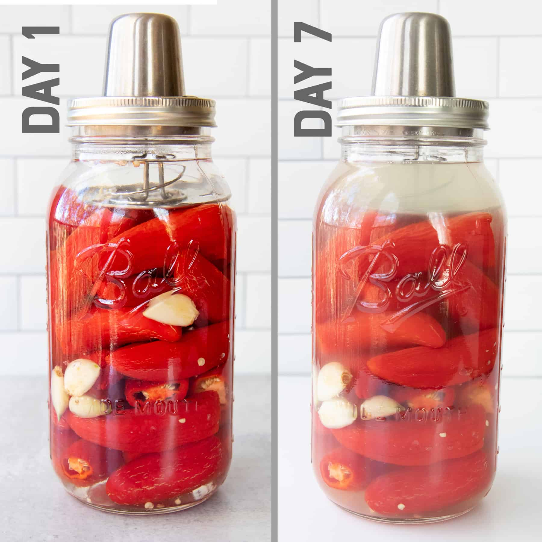 Side by side shots showing Day 1 and Day 7 of fermenting red peppers and garlic.