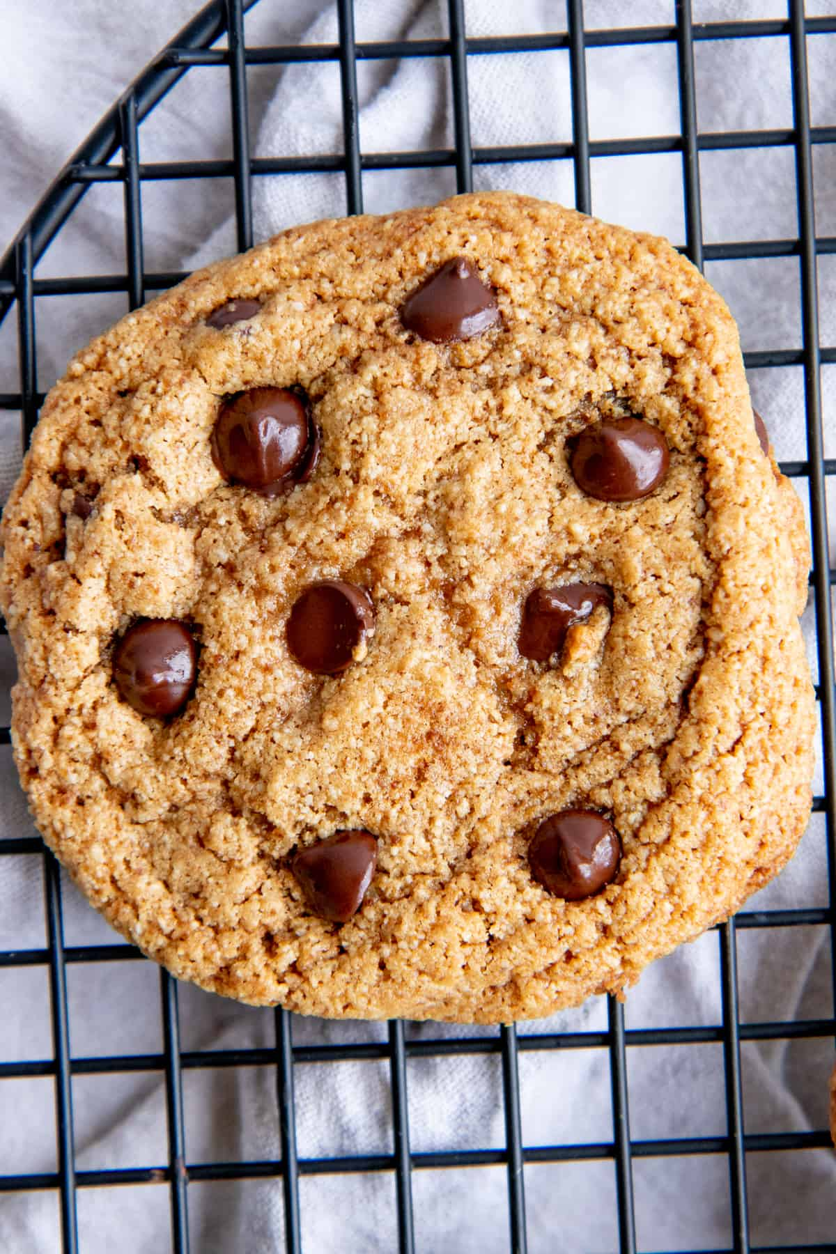 Close up of a paleo chocolate chip cookie.