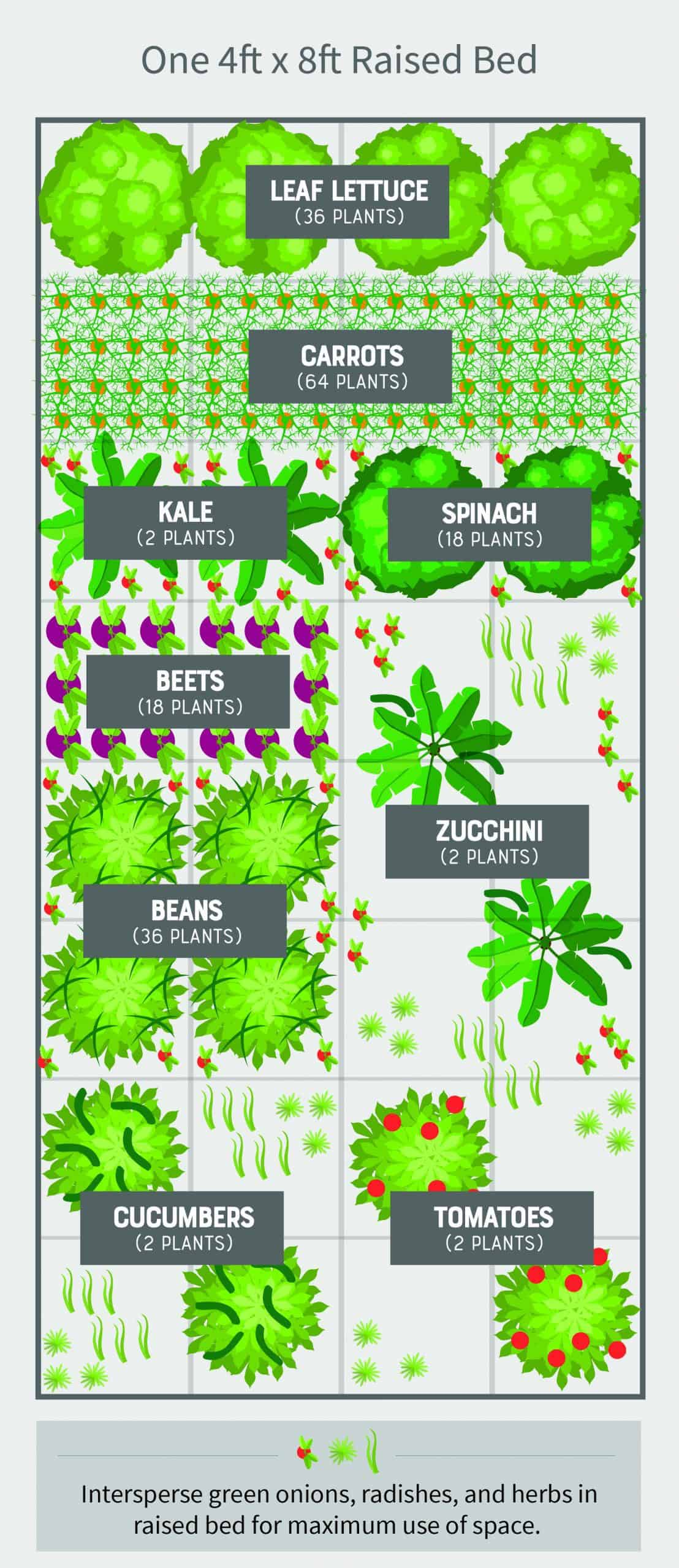 How To Build A Cheap And Easy Emergency Vegetable Garden Wholefully