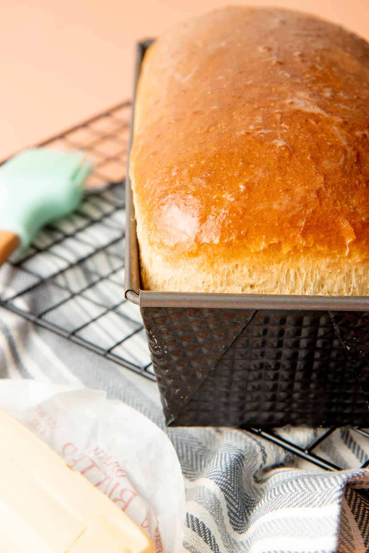 A baked loaf of bread sits in a loaf pan on a wire rack.