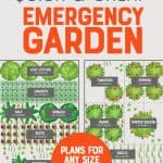 "Plot of an emergency vegetable garden plan for two 4'x8' raised beds. A text overlay reads ""How to Build a Quick and Cheap Emergency Garden. Plans for Any Size Growing Space!"""